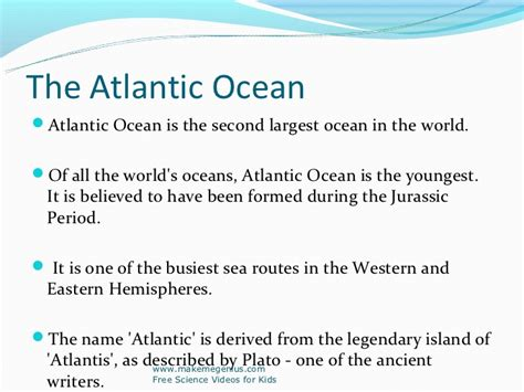 Facts About The Ocean Floor by Best Ppt On Ocean Facts