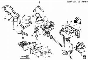 Chevrolet Caprice Harness  Engine Wiring  Harness  Eng Wrg