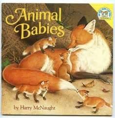 1000 images about baby animals preschool theme on 451 | 1172b0707156ac55331ffe0c9b21ad7e