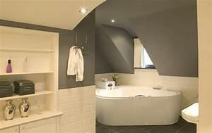 plafond de salle de bain elegant video dcoration plafond With meilleure peinture pour plafond