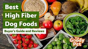 8 Best High Fiber Dog Foods May 2020 Reviews The