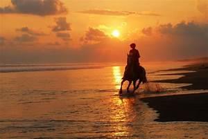 Sunset Horseback riding in Canggu, Bali – TOP INDONESIA ...
