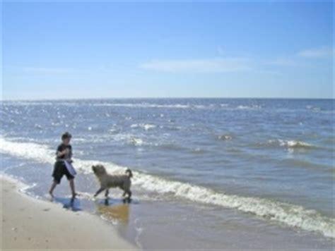 Ferienwohnungen & Ferienhäuser In Zandvoort Mieten