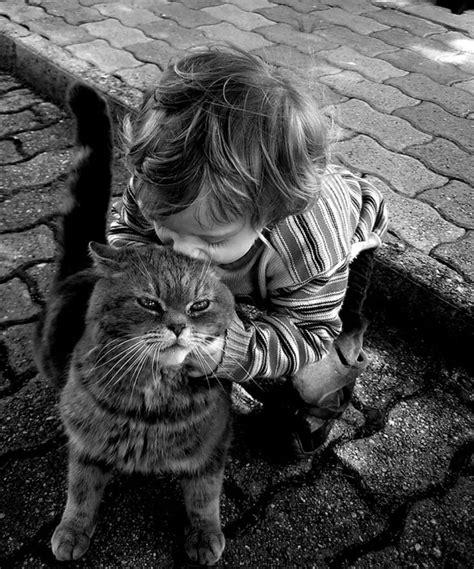 immagini bambini dolcissimi 21 dolcissimi gatti con i loro piccoli padroni foto