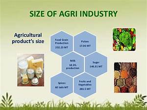 Agro based industries scenario and their future in India