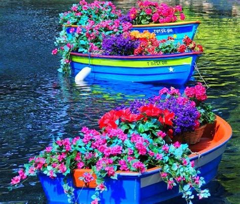 Floating Boat Garden Design by Floating Gardens Boats Sail Water Plus