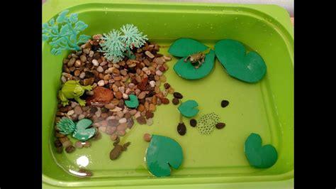 learning safari preschool games