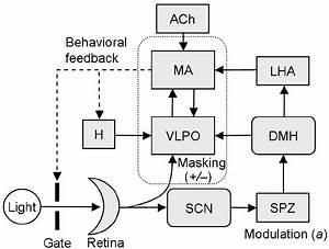 Block Diagram Biomedical Sleep Inducer. new product developments from agc  biomedical devices inc. cardiac pacing i n s 3 l. biomedical sleep inducer  project ideas. pdf mobile healthcare for automatic driving sleep2002-acura-tl-radio.info