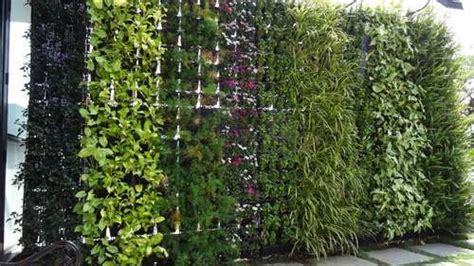 Bhoomi Landscapes-service Provider Of Vertical Garden