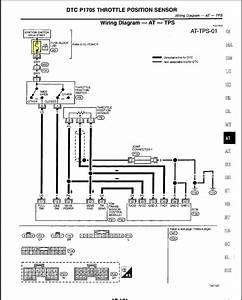 1999 Infiniti G20 Wiring Diagram
