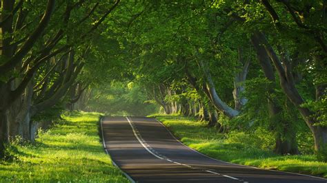 landscapes pictures hdr landscape road full hd wallpaper and background 1920x1080 id 462816