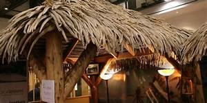 Toit En Paille : toit de chaume ou toilette broyeur gilles angers le ~ Premium-room.com Idées de Décoration