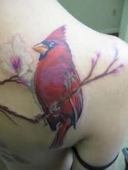 cardinal tattoos designs ideas  meaning tattoos