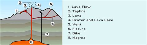 lava l experiment hypothesis diagram of lava l diagram of gold elsavadorla