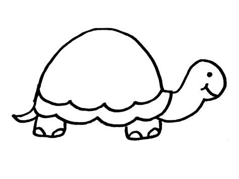 turtle template free printable turtle coloring pages for