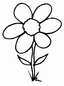 Simple Flower Outline - Cliparts.co
