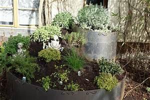Kräuter Pflanzen Topf : kr uter pflanzen bambus und pflanzenshop ~ Lizthompson.info Haus und Dekorationen