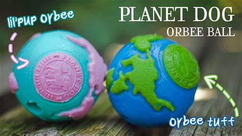 Planet Dog Lil' Pup Orbee Ball & Planet Dog Orbee-tuff