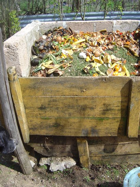 how do you make compost what is compost how do you make compost everything you need to know about composting