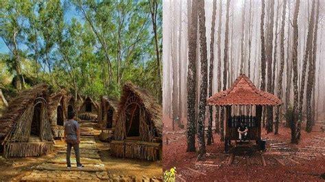 hutan pinus mangunan objek wisata alam terbaik