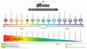 Shampoo Ph Scale Diagram