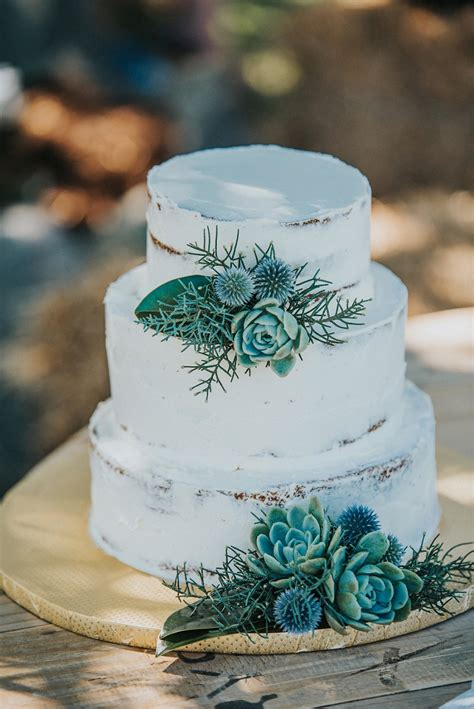 stunning succulent wedding cakes inspired  nature page