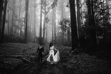 wedding photography melbourne   bird