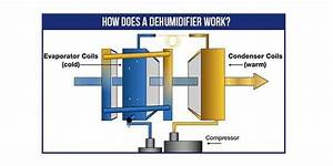 Don U0026 39 T Know How Does A Dehumidifier Work  Read On