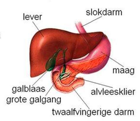 ontstoken alvleesklier behandeling