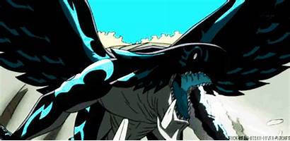 Dragon Acnologia Fairy Tail Vs Zeref Kurama