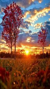 Autumn, Morning, Sun, Wallpaper, By, Julianna, -, F7