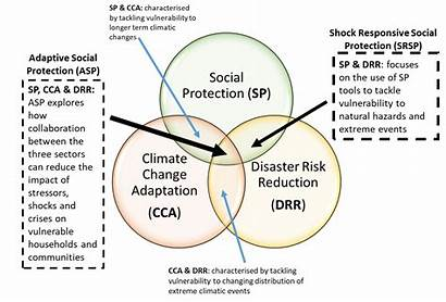 Adaptive Protection Social Responsive Shock Itad Thematic