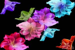 3D Fantasy Flowers Wallpapers Free Download HD