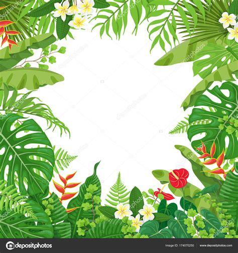 foto de Fundo colorido com plantas tropicais Vetores de Stock