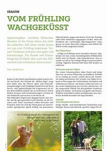 Zeit Für Frühling : aras magazin zeit f r tiere vom fr hling wachgek sst ~ Orissabook.com Haus und Dekorationen