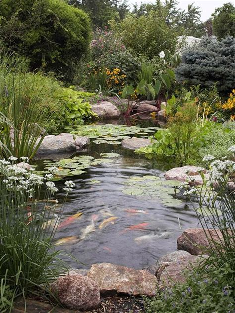 Backyard Habitat - create a backyard wildlife habitat amazing gardens