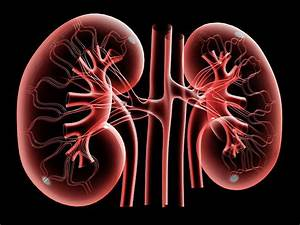 Proton Pump Inhibitors May Increase Risk For Kidney Disease