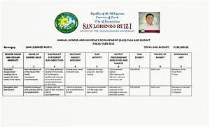 Excel Youth Sports San Lorenzo Ruiz I Gad Plan