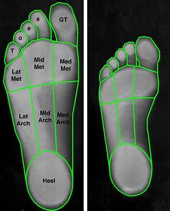 Foot Sole Area Measurement  The Surface Areas Of 9