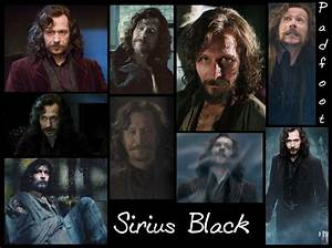 Sirius Black - Sirius Black Photo (28235993) - Fanpop