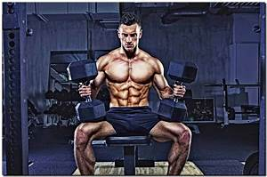 Best Beginning Bodybuilding Workout Plan With A Complete Guide