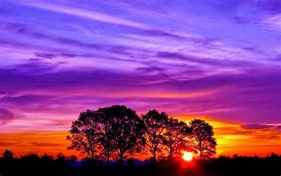 Wallpapers Sunset Downloads Labels