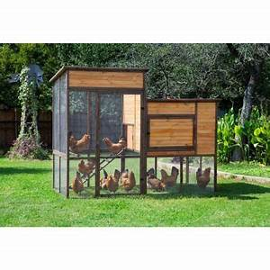 Precision Pet Products Walk-In Prairie House Chicken Coop ...