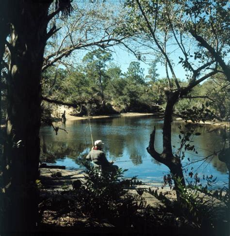 park state koreshan estero river florida fishing