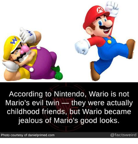 Wario Memes - according to nintendo wario is not mario s evil twin they were actually childhood friends but