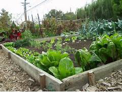 DIY Awesome Vegetable Gardening Tips EASY DIY And CRAFTS Small Garden Design Ideas Australia 2816 2112 Cool Backyard Uk Landscape Designs Best Small Garden Ideas Garden And Patio Unique Vegetable Garden Ideas For Small Garden