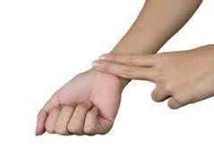 Puls Berechnen 15 Sekunden : wie kann ich meinen puls ohne ger t messen hals handgelenk ~ Themetempest.com Abrechnung