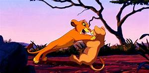 le roi lion lion king simba nala dispute bagarre Image ...