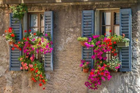breathtaking flower box ideas   grab