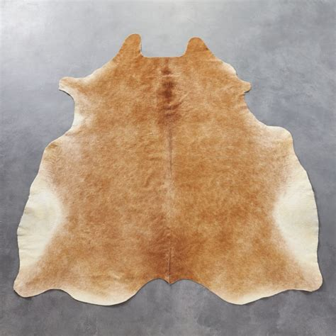 How To A Cowhide by Cowhide Light Brown Rug 5 X8 Reviews Cb2